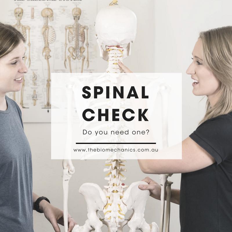 Spinal Check.png