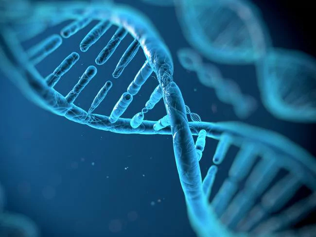 The hi-tech DNA database will improve the prevention, diagnosis and treatment of chronic disease. Picture: iStock Source:istock