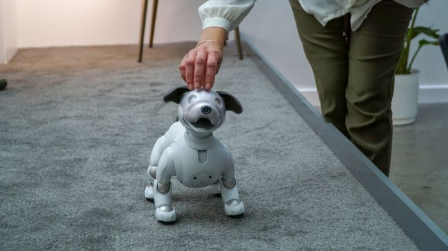 Sony's Aibo is a robot dog that responds to your touch  (Image credit: Sony)