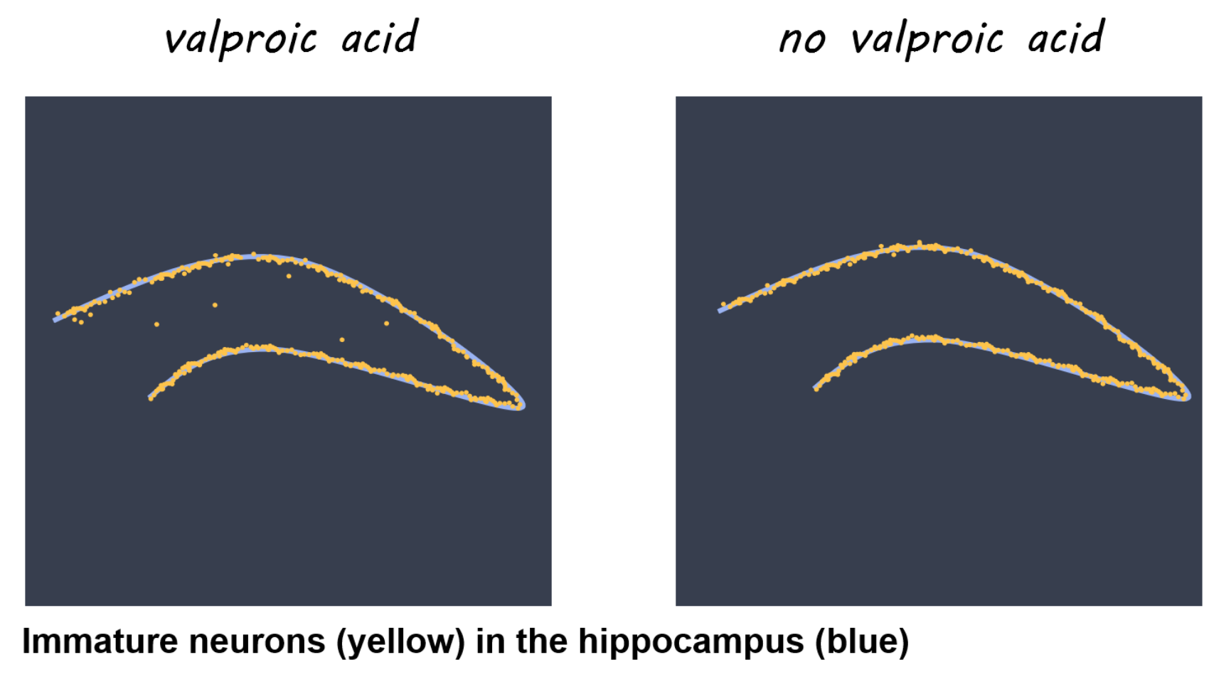 Artistic rendering of Figure 1c