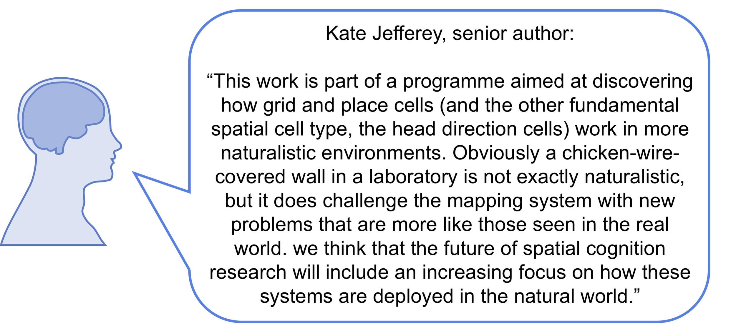 Kate_Jefferey_Quote_March12.jpg