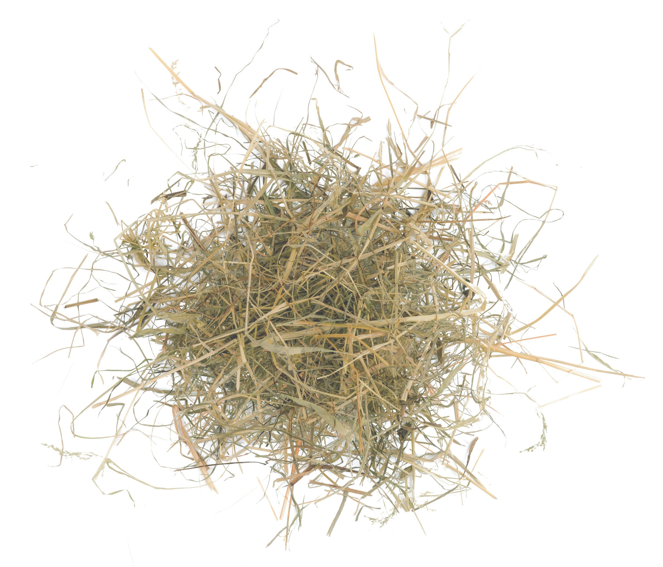 - HayDry grass for animal feed.