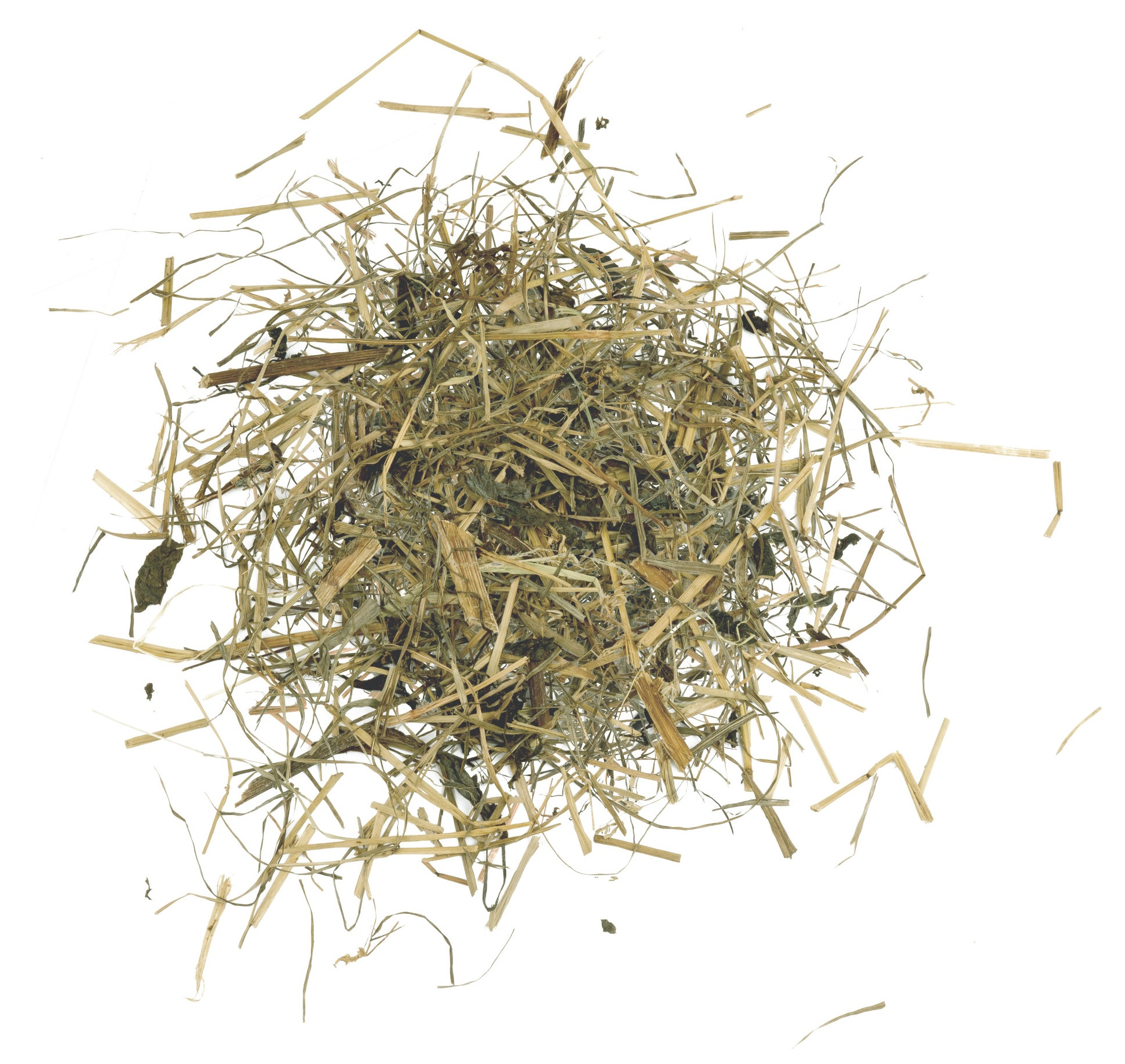 - SilageFermented grass which also contains red clover, able to provide more protein to the cows.