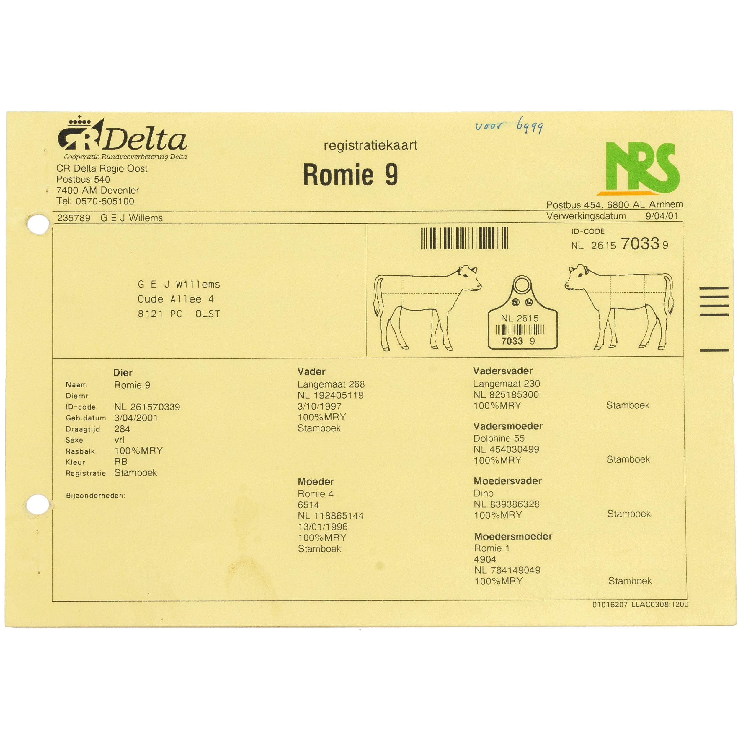 - Identity CardID Card of Romie 18's mother, Romie 9.