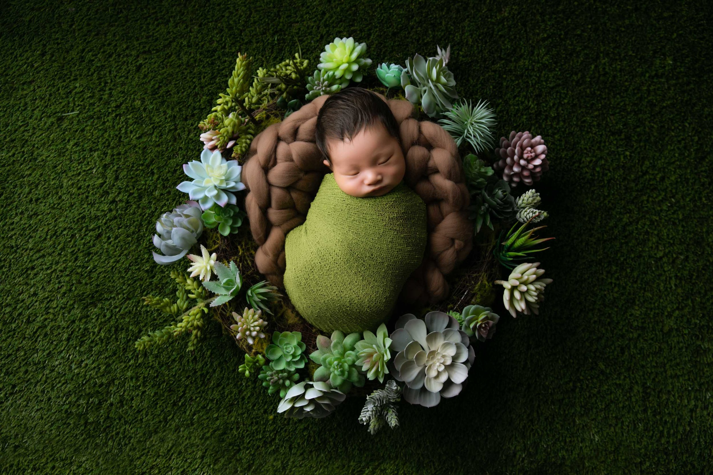 newborn photo by AnnaClaire Studio 悉尼儿童摄影