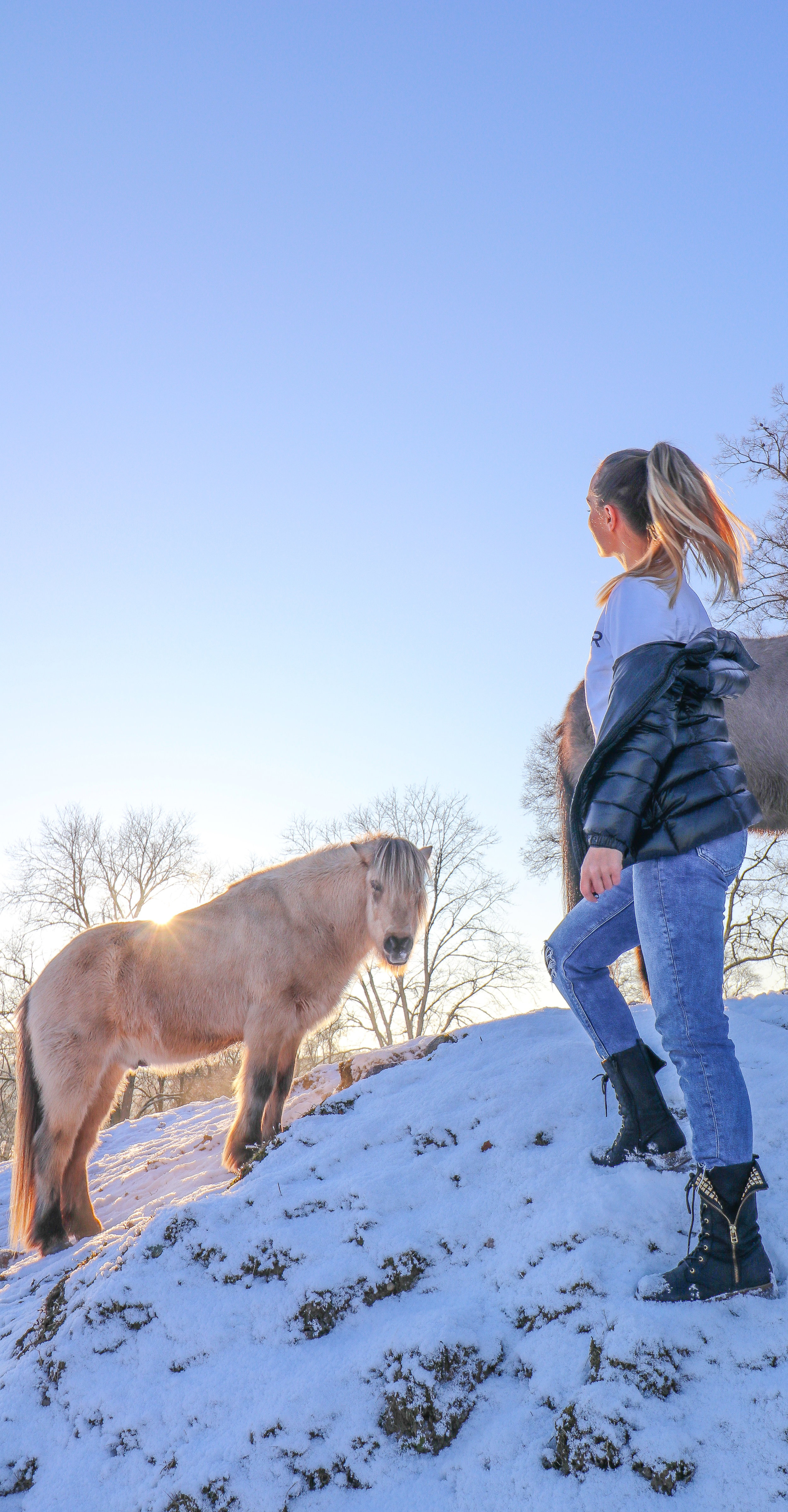 With the horses in Sweden Photo by Linda Haggh.jpg