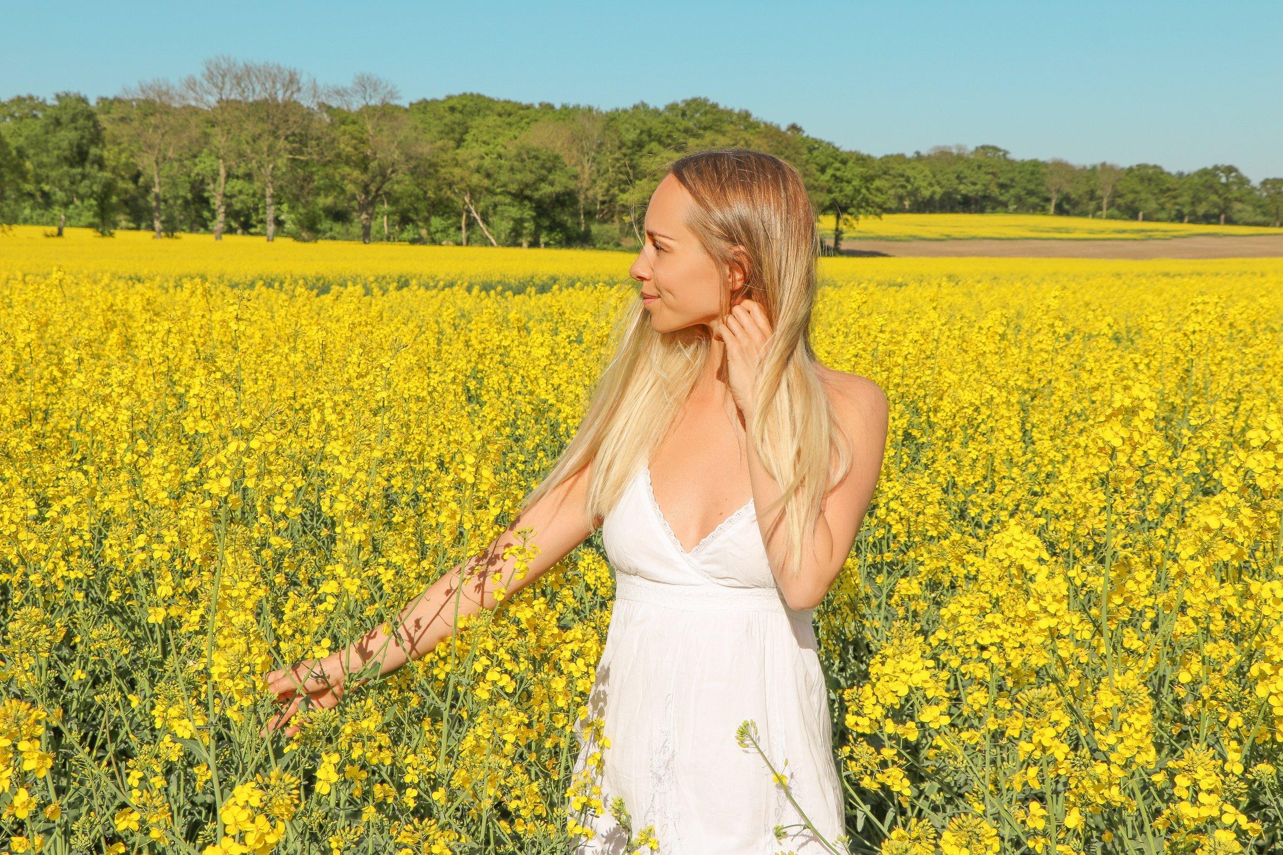 Swedish countryside and fields of gold photo Linda Haggh.jpg