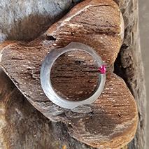 ring-1.png