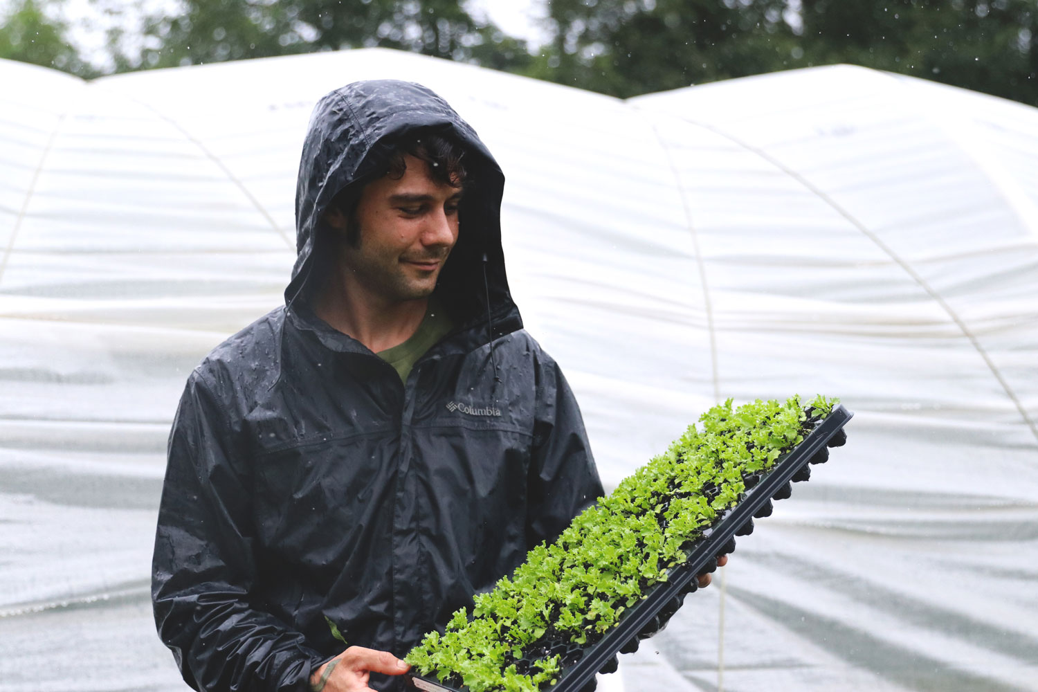 Our intention with the farm is to grow specifically for chefs. - Zach Richards of Levity Farms