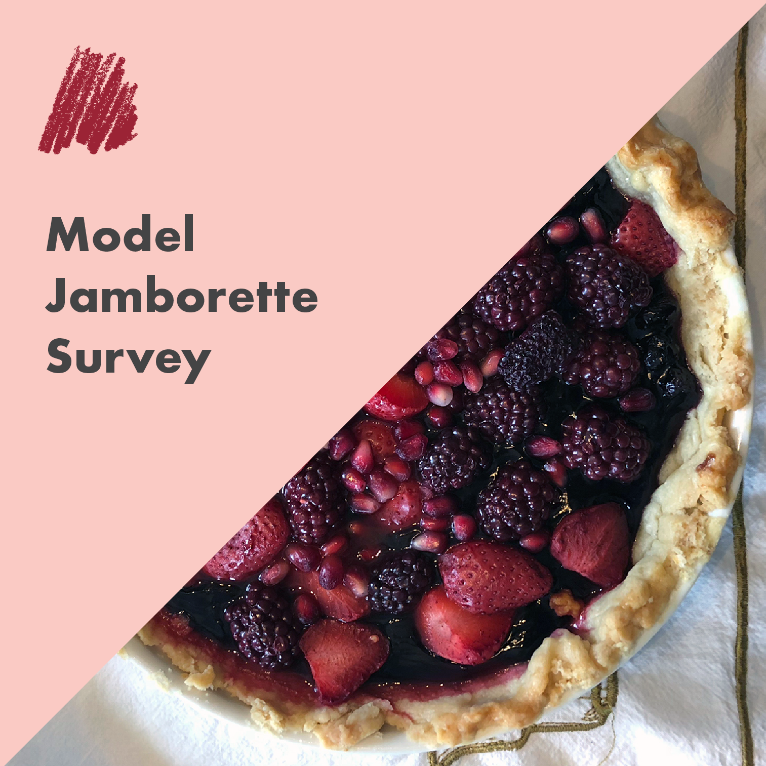 Model Jamborette Survey.png