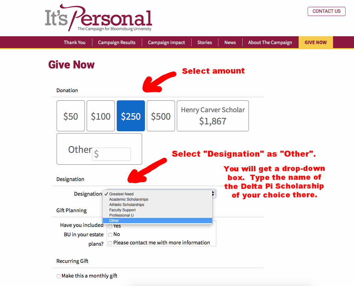 """Above is a screenshot of the Bloomsburg University Foundation """"It's Personal"""" donations landing page.  Please use this as your guide."""