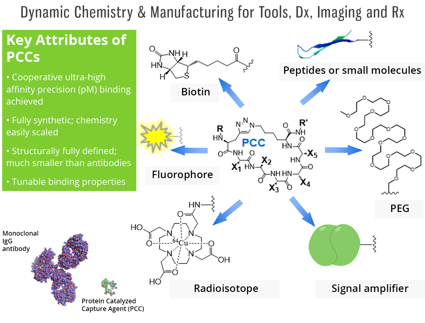 Image 5 Dynamic Chemistry Version 3.jpg