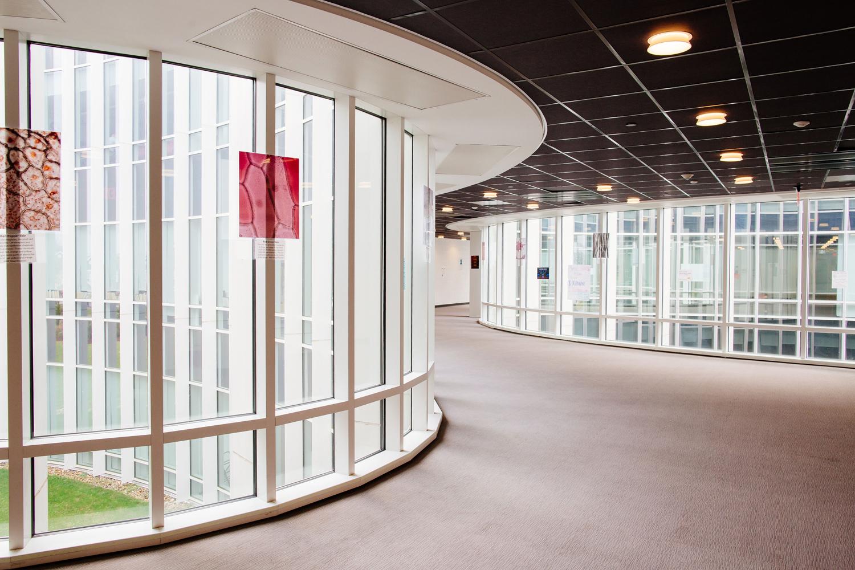 Circular Glass Windows in the Hallways