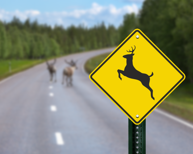 deer-crossing-sign.png
