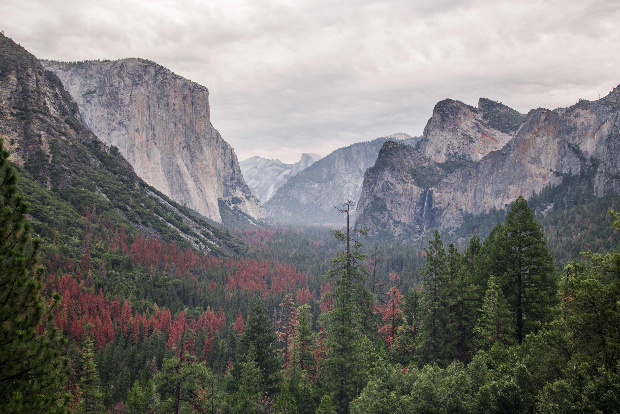 CallumBurns_Yosemite (1 of 9).jpg