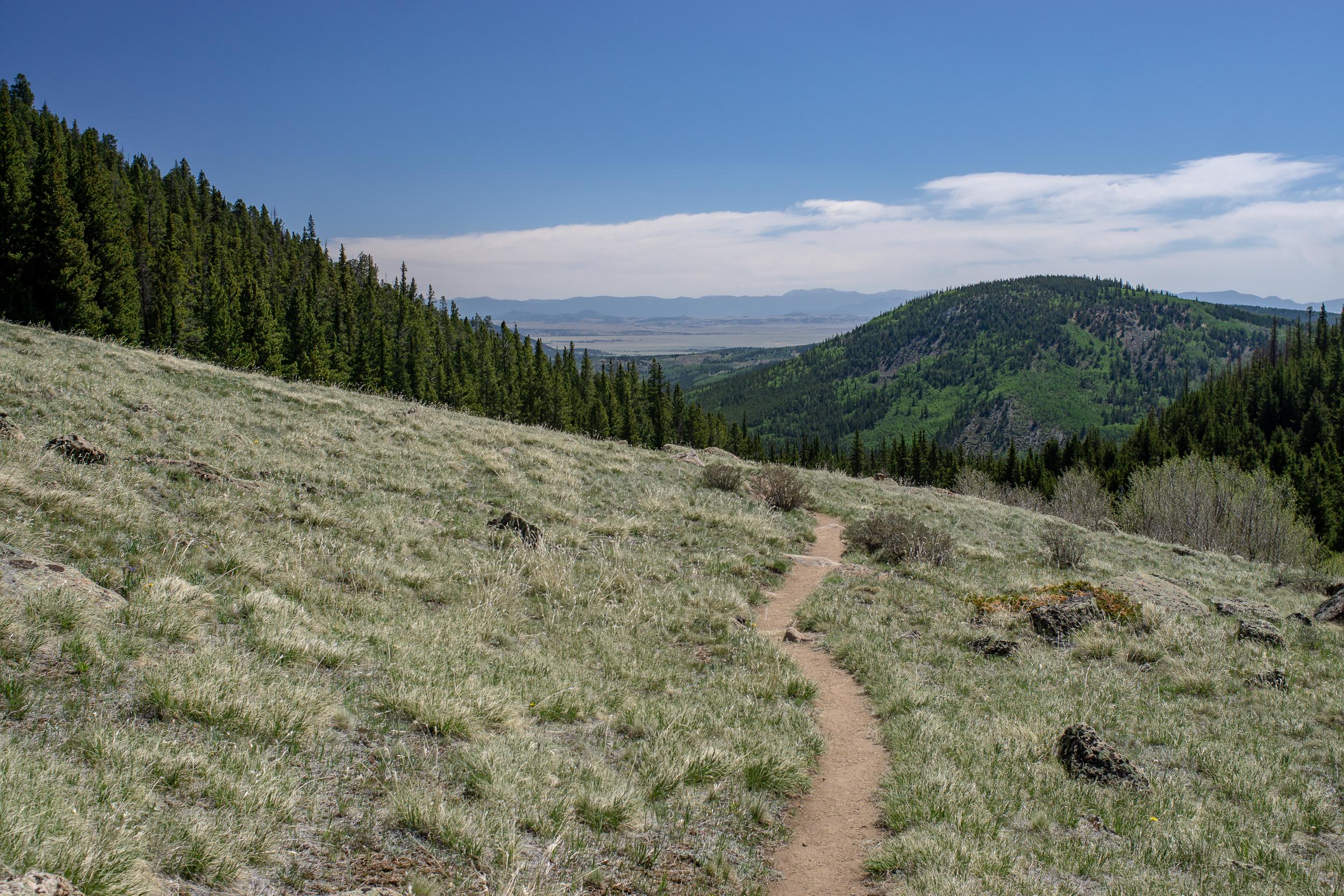2018-Buffalo Peaks Wilderness-00328.jpg