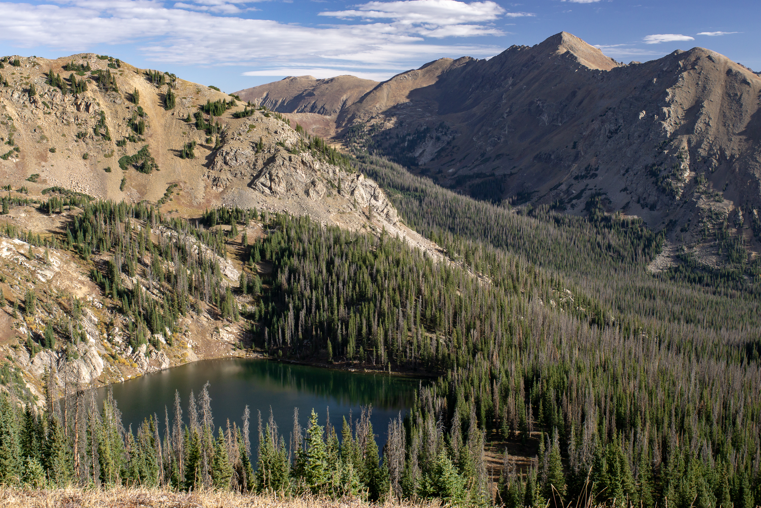Never Summer Wilderness-01050.jpg