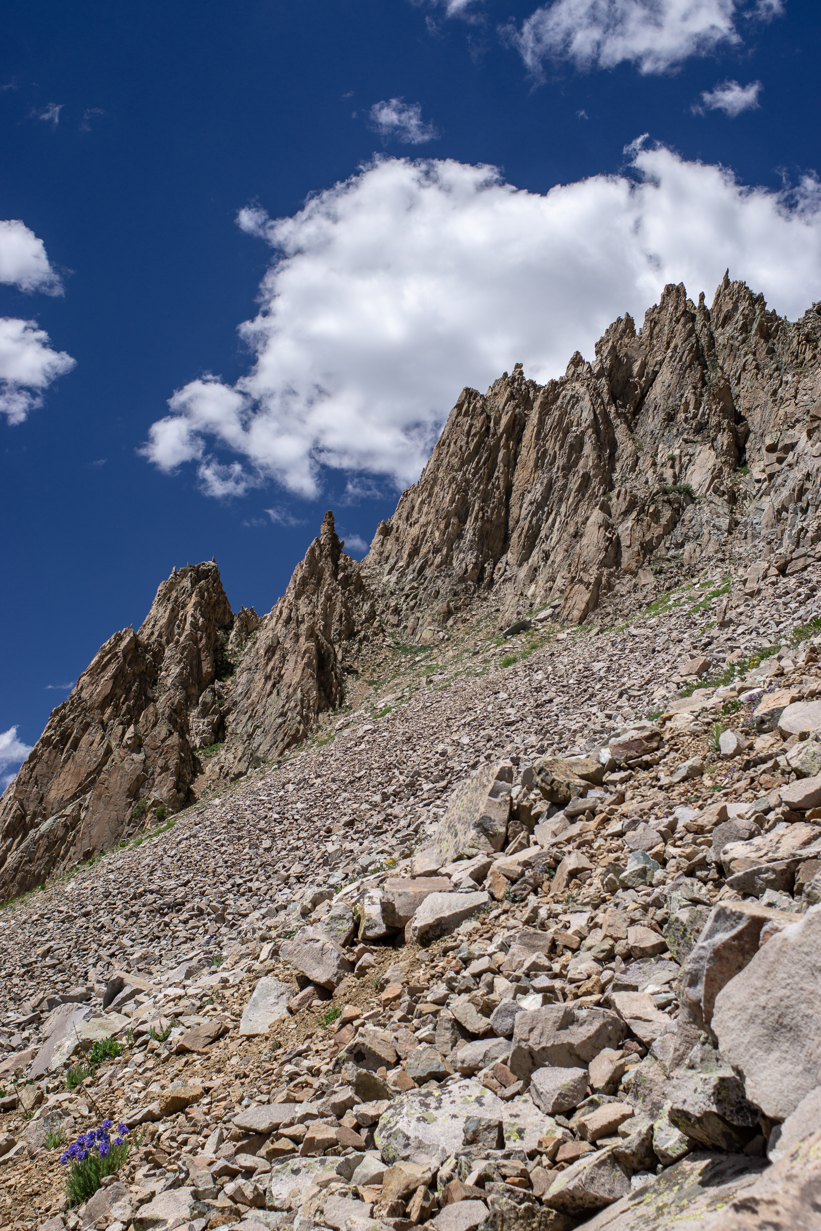 capitolcreekcircuit-00861.jpg