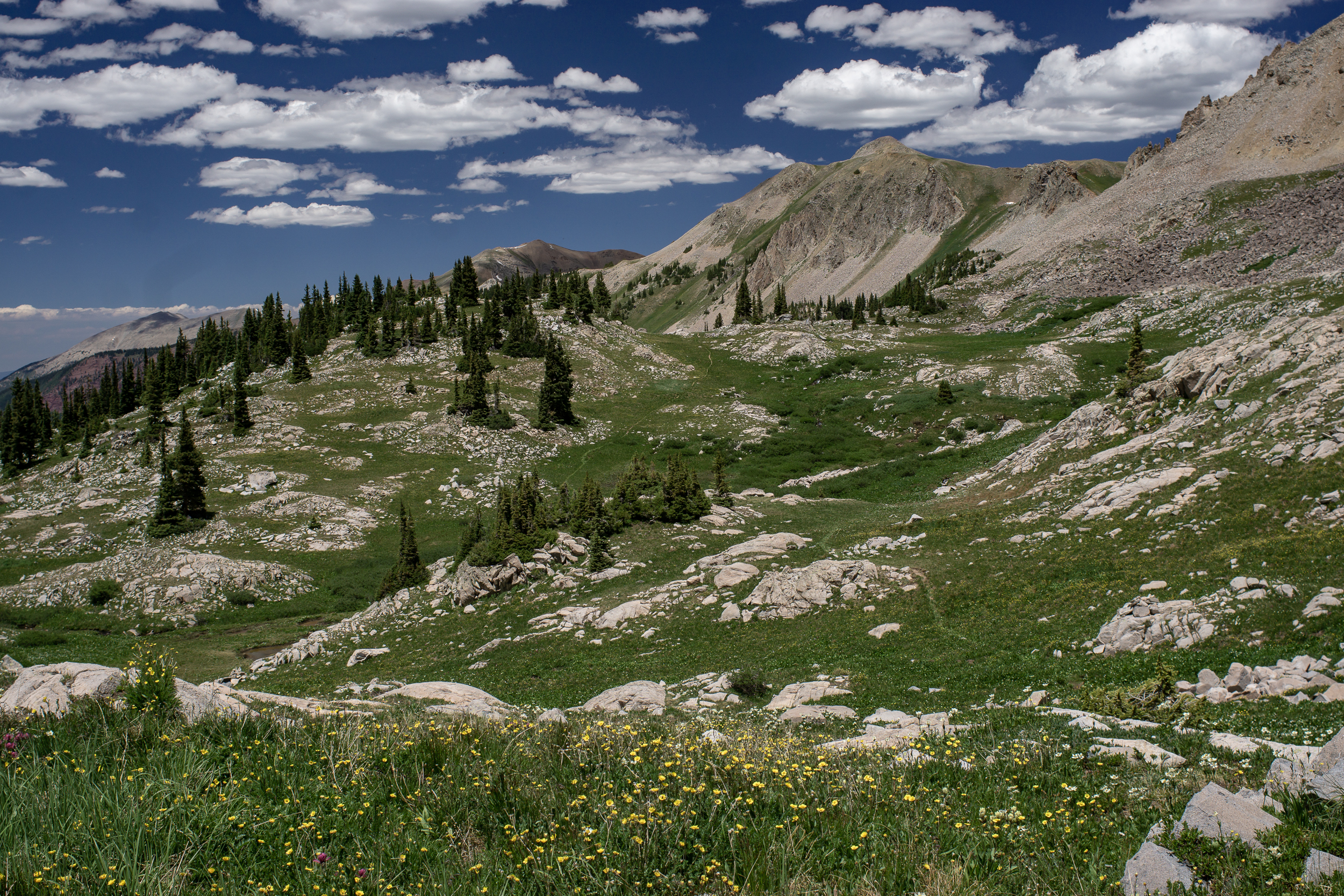 capitolcreekcircuit-00839.jpg