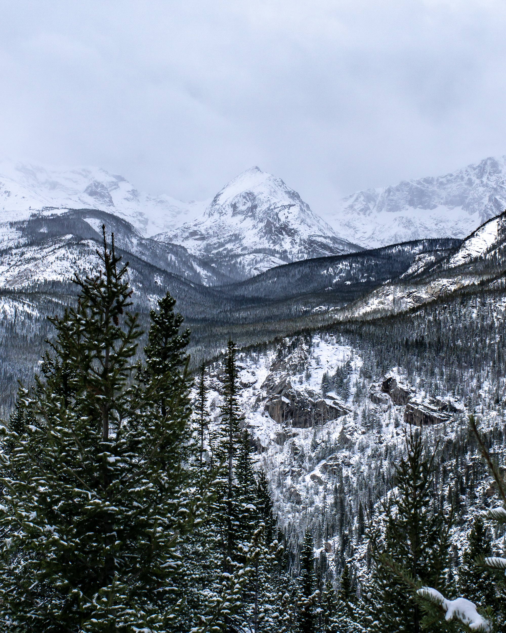 2018-Wild Basin Snowshoe-01343.jpg