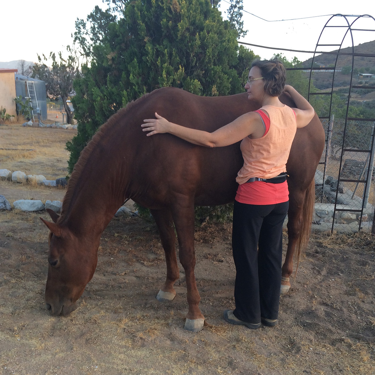Olivia working with Sienna at Embody Life Ranch.