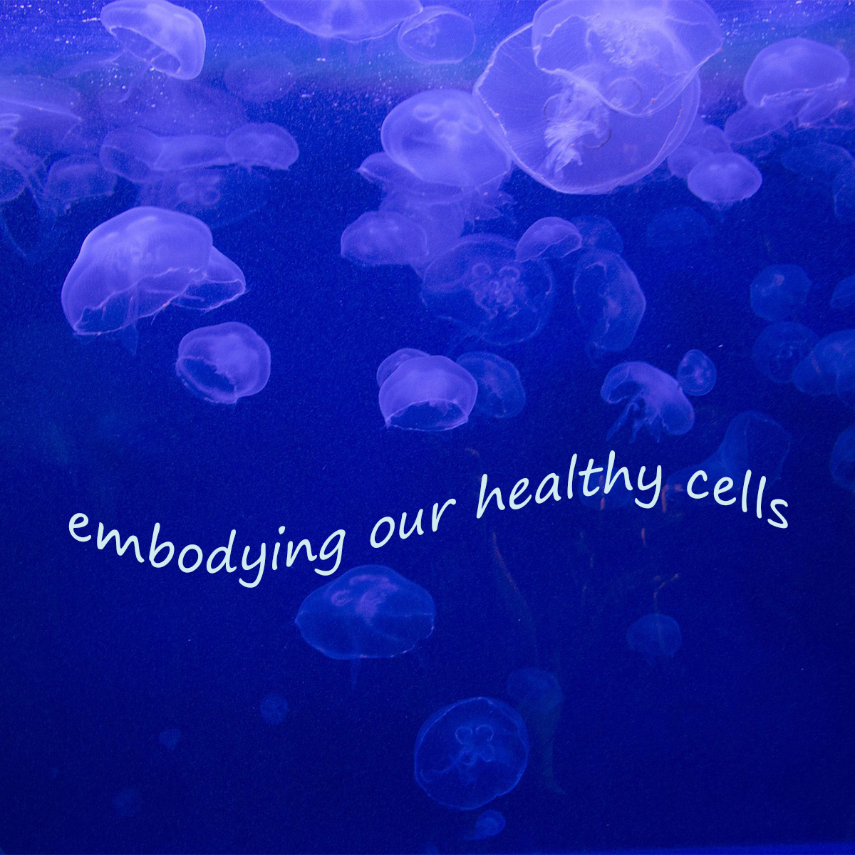 Embodying-Our-Healthy-Cells-1920_square_writing.jpg