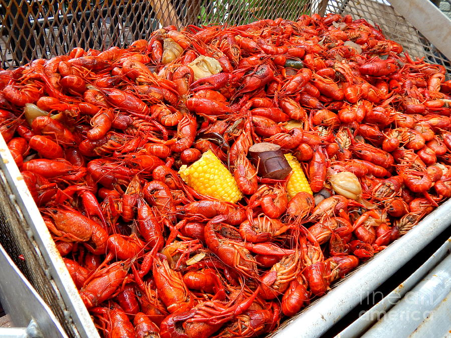 crawfish boil - more is always better