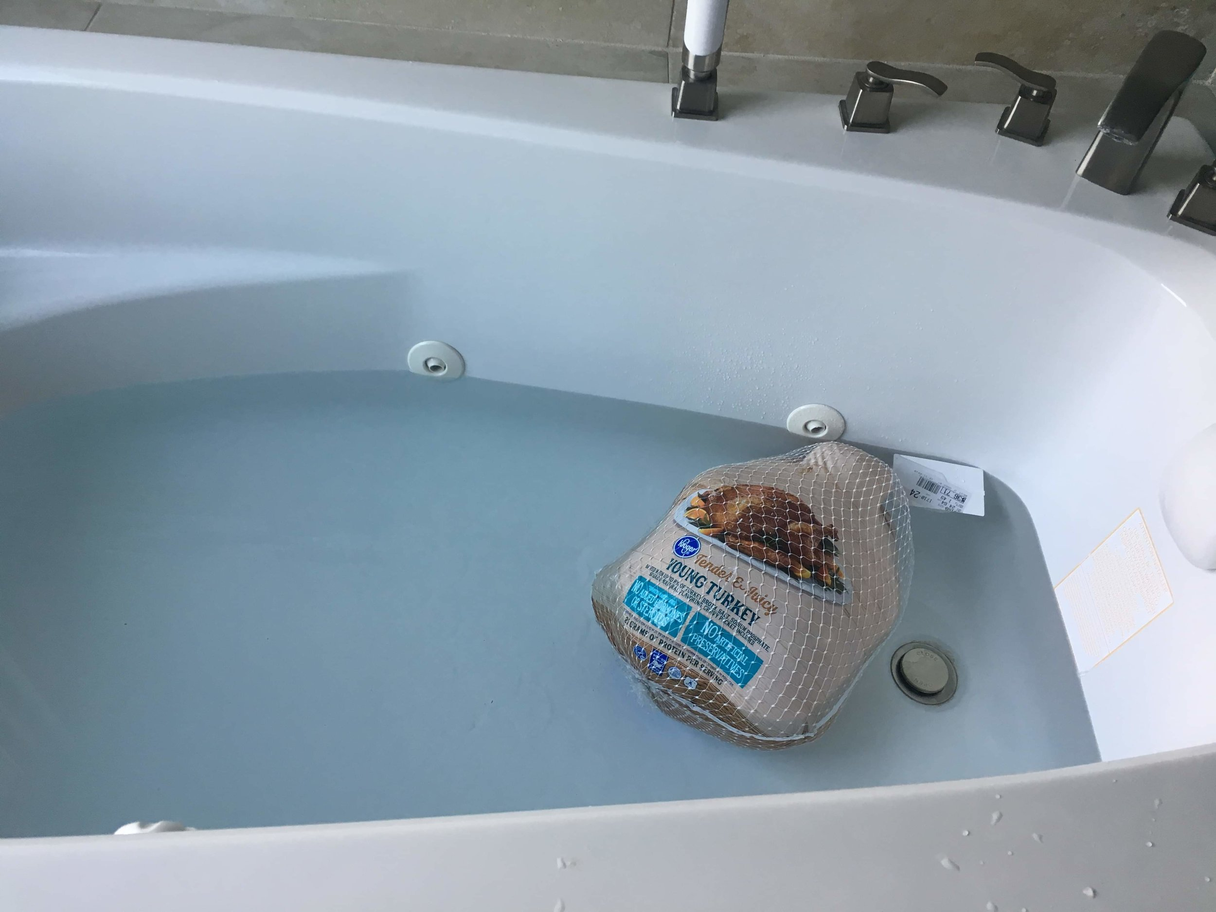 The bird made it to our new Jacuzzi tub before we did!