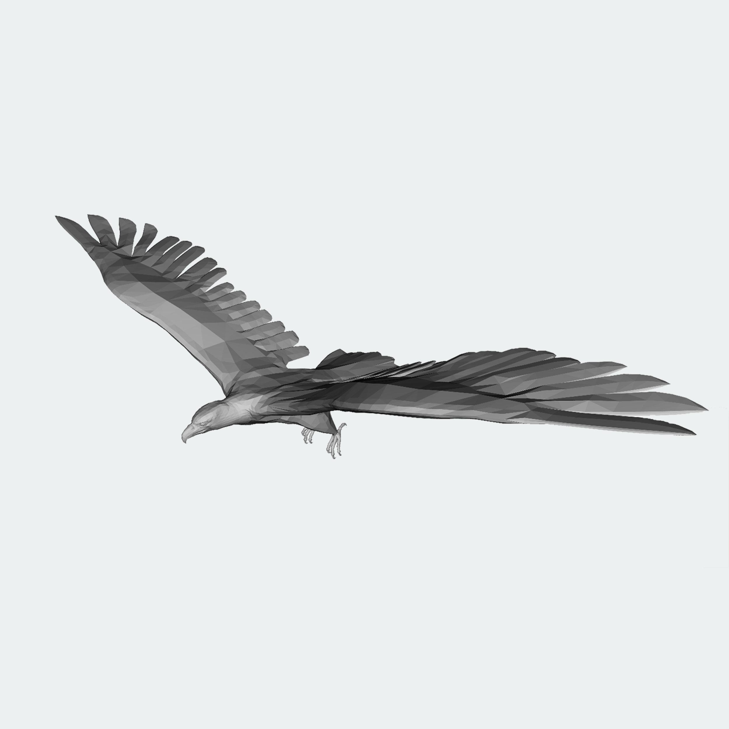 unrendered_eagle.png