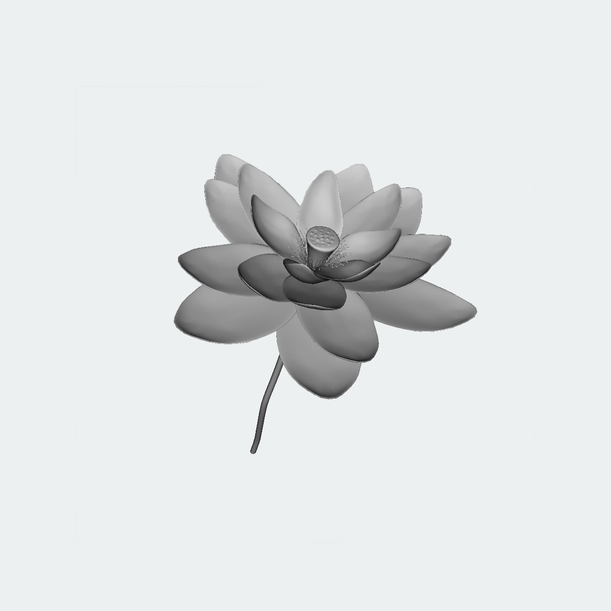 unrender_lotus.png