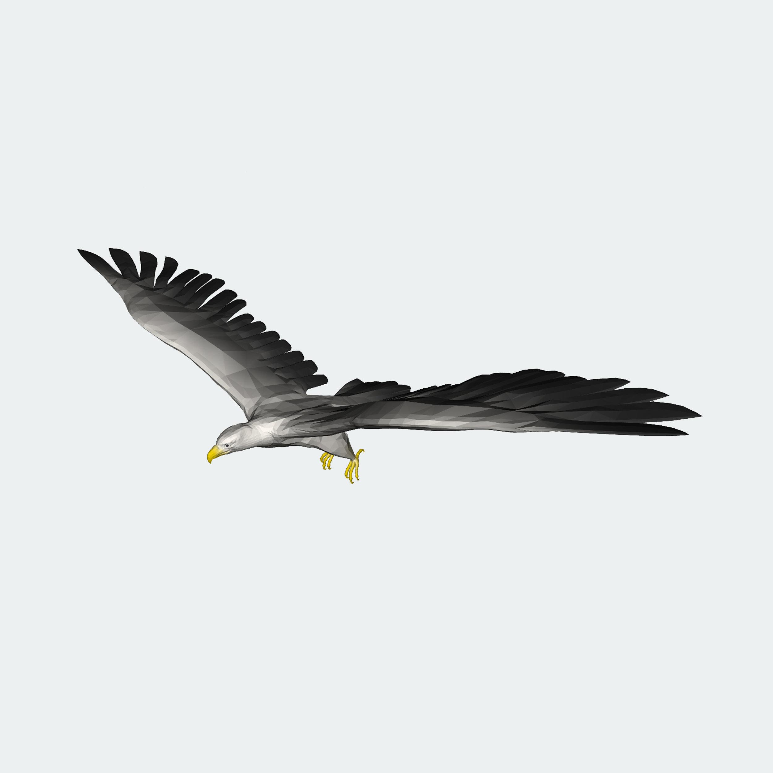 rendered_eagle.png