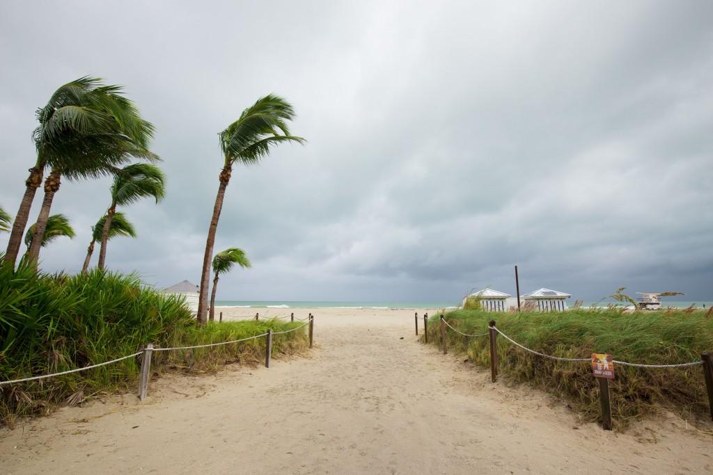 Florida1-edit-1024x683.jpg