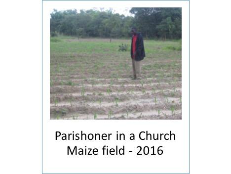 Zambia0417ChurchMaizeField.jpg