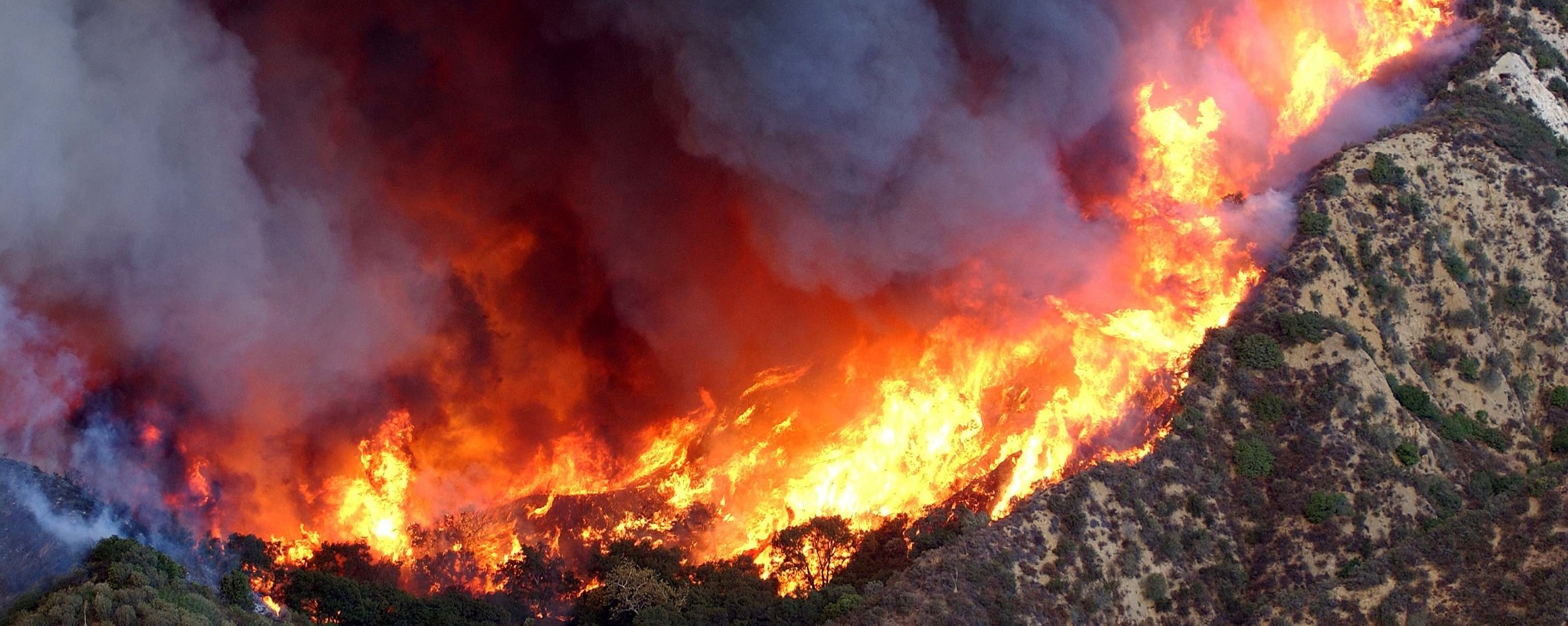 wildfire 2018 web.jpg