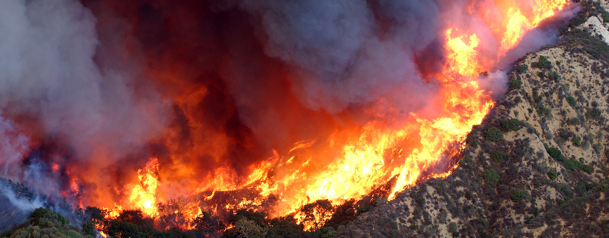 wildfire 2018 web banner_Sm.jpg