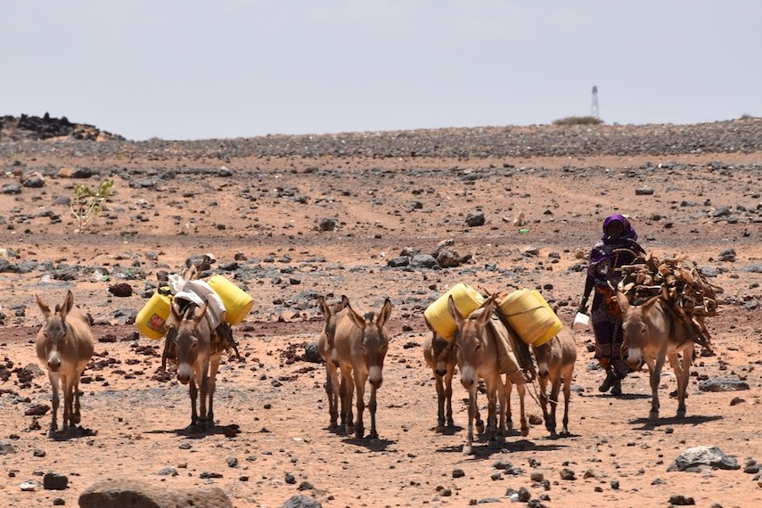 The dry landscape of this part of Kenya is agrivating tribal conflicts.