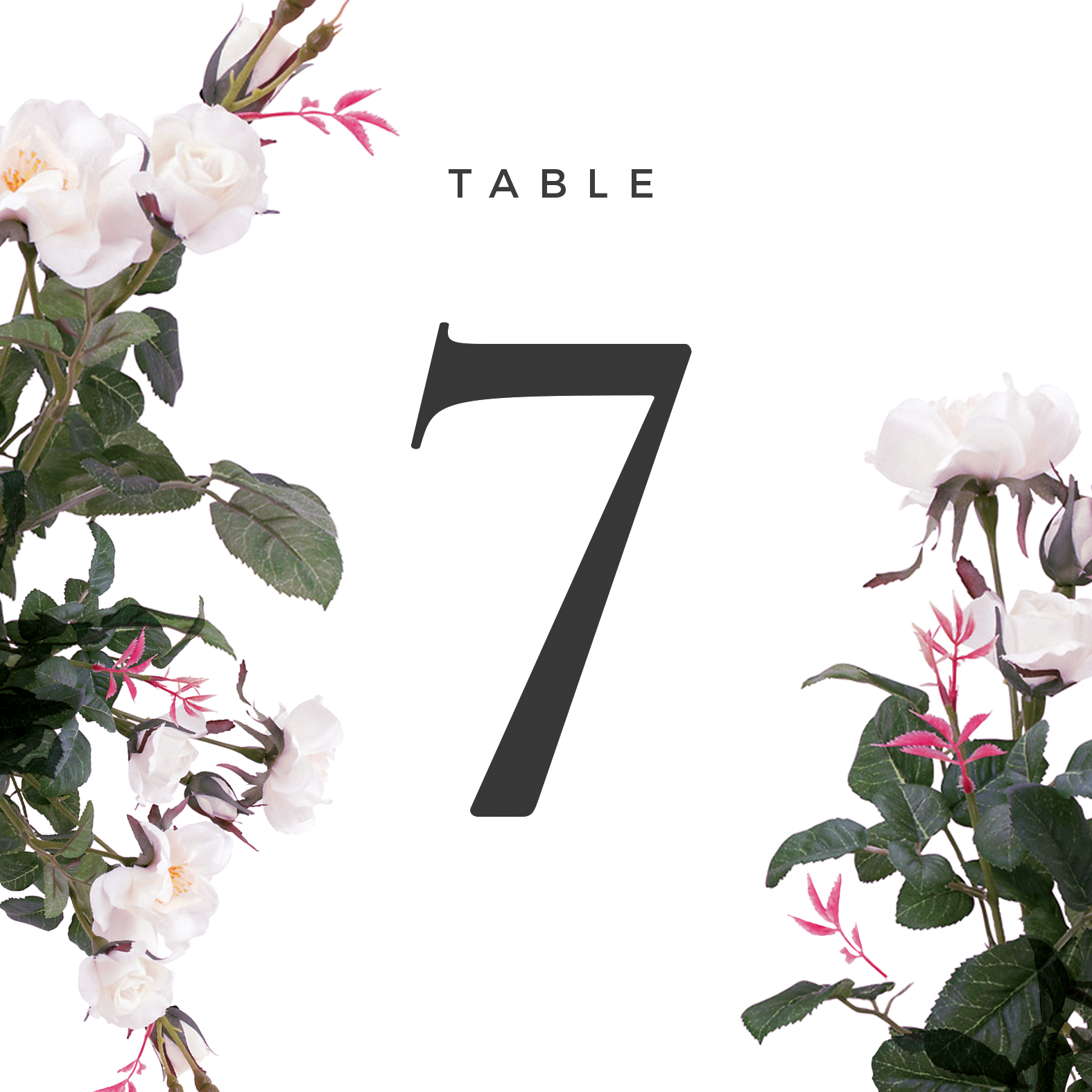 Purity - Table Numbers