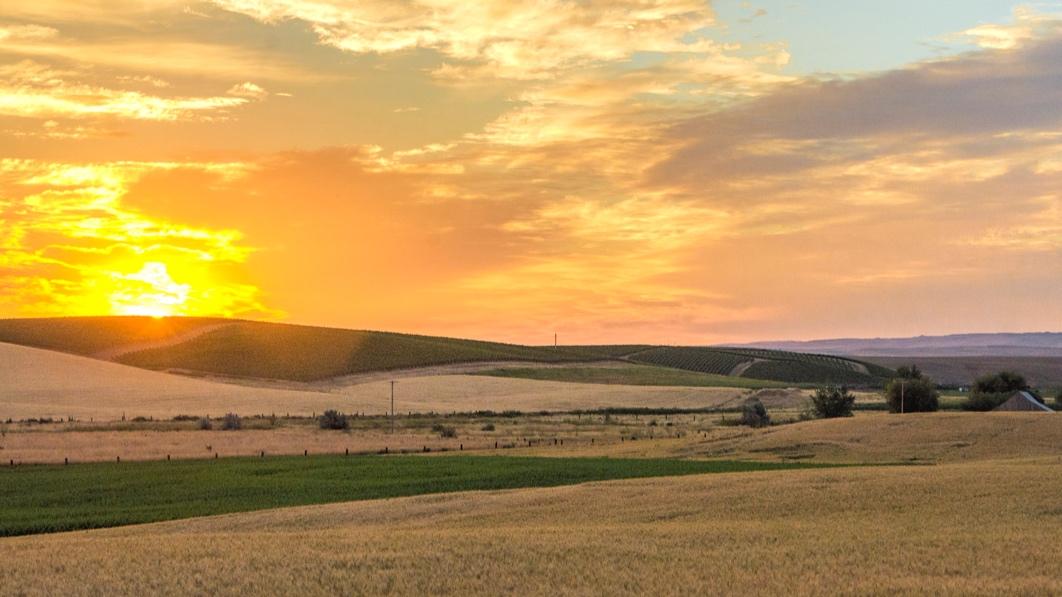 Harvest View Estates