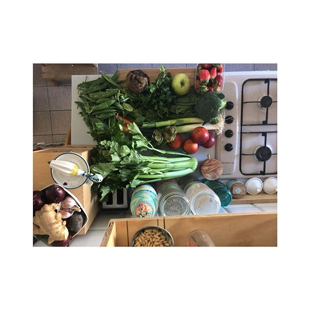 Recipe creation kind of day for our next Reconnect...straight for the neighborhood the kitchen. Come try our delicious plant based meals from May 30- June 4  #reconnect_retreats  #plantbaseddiet #foodie #simplepleasures