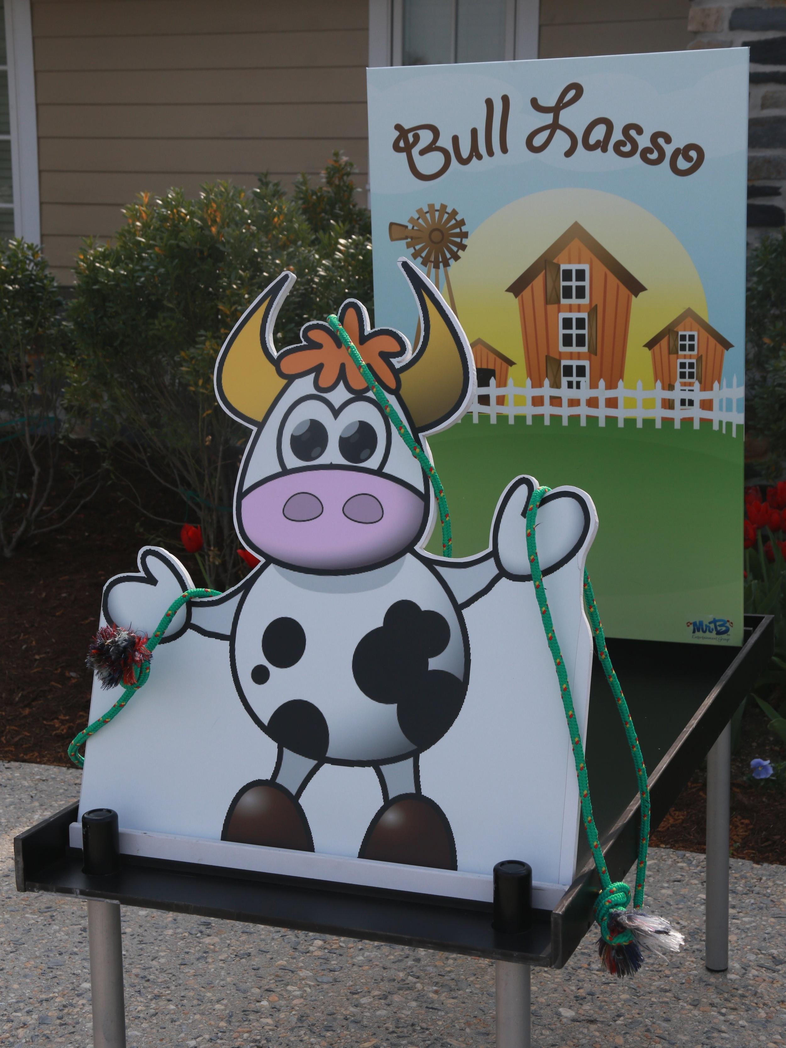 Bull Lasso
