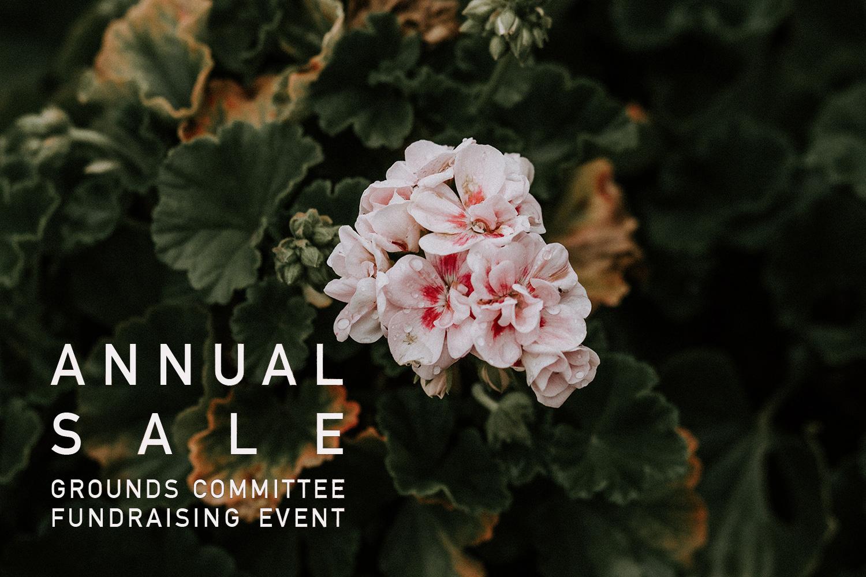 annuals--sale.jpg