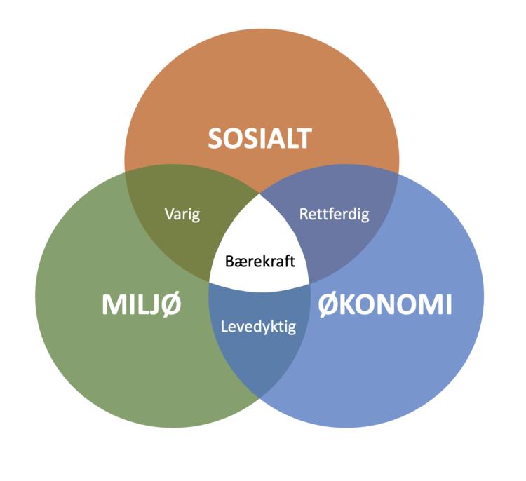 Bærekraft oppnås når disse tre pilarene fungerer sammen.