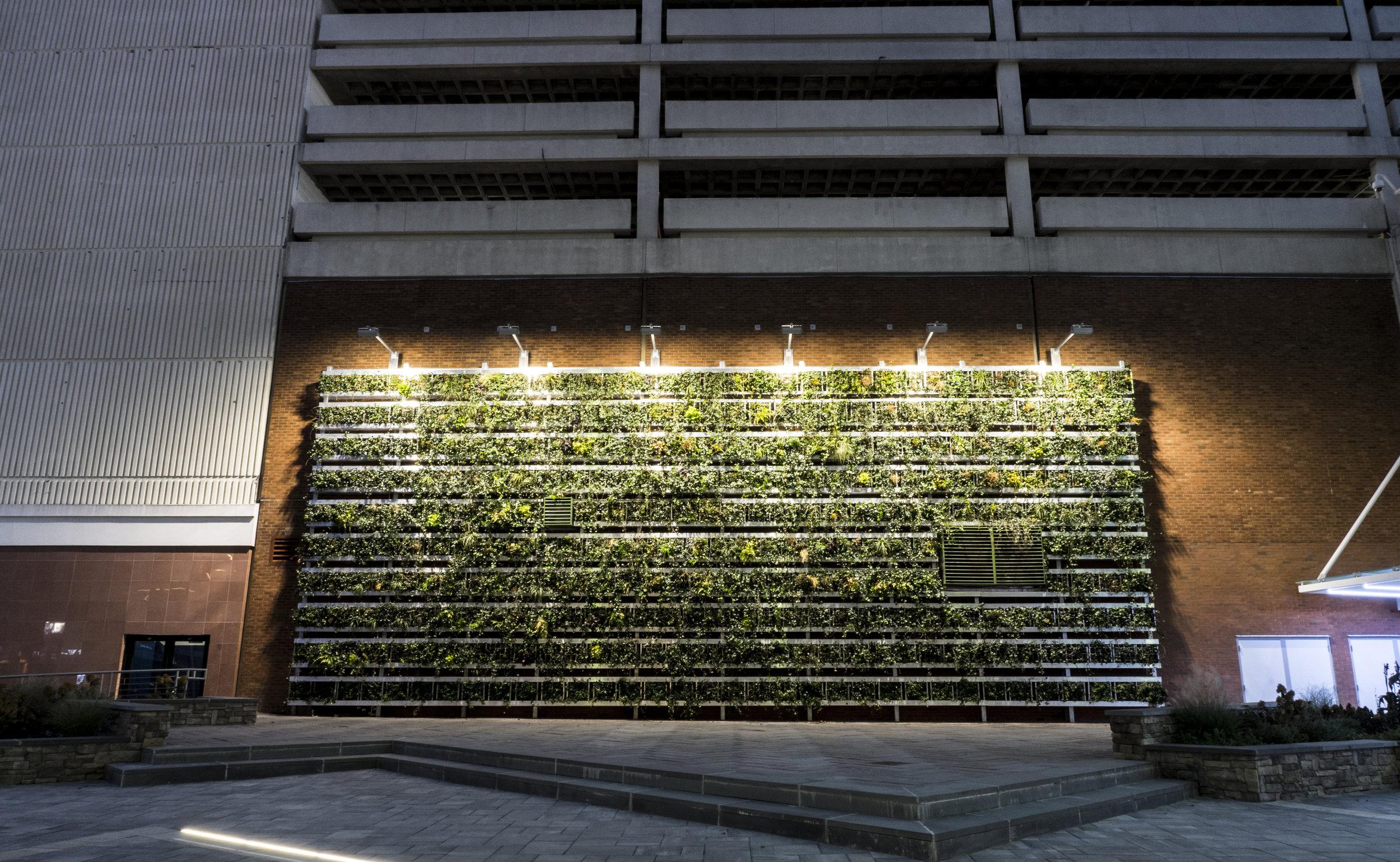 Plaza 9.jpg