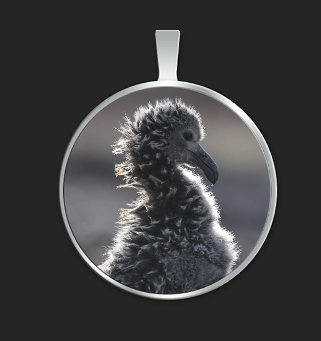 albatross-chick-home-alone-circle-pendant.png