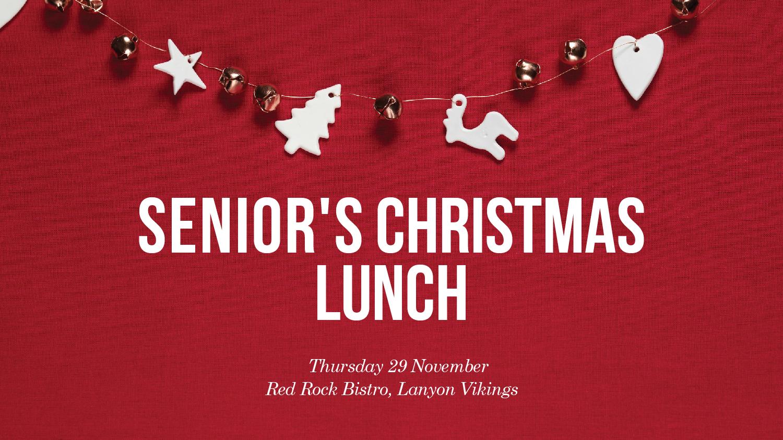 Lanyon_Senior's Christmas Lunch_EDM-1500.jpg