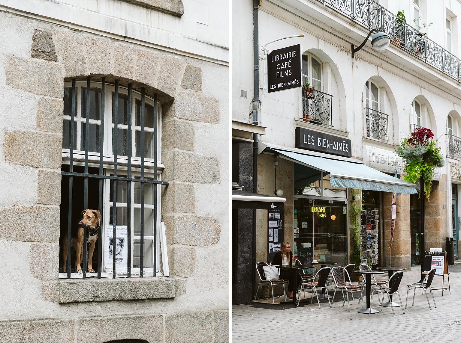 nantes france travel photography swan dives co 2018 3.jpg
