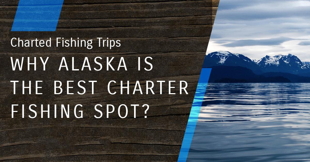 Blog_WHY ALASKA IS THE BEST CHARTER FISHING SPOT_.jpg
