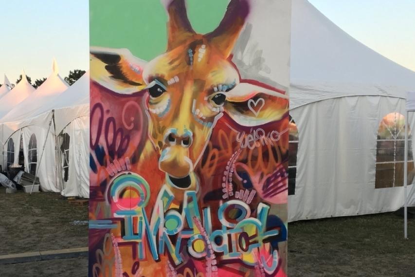 Mopop music festival - Detroit, MI
