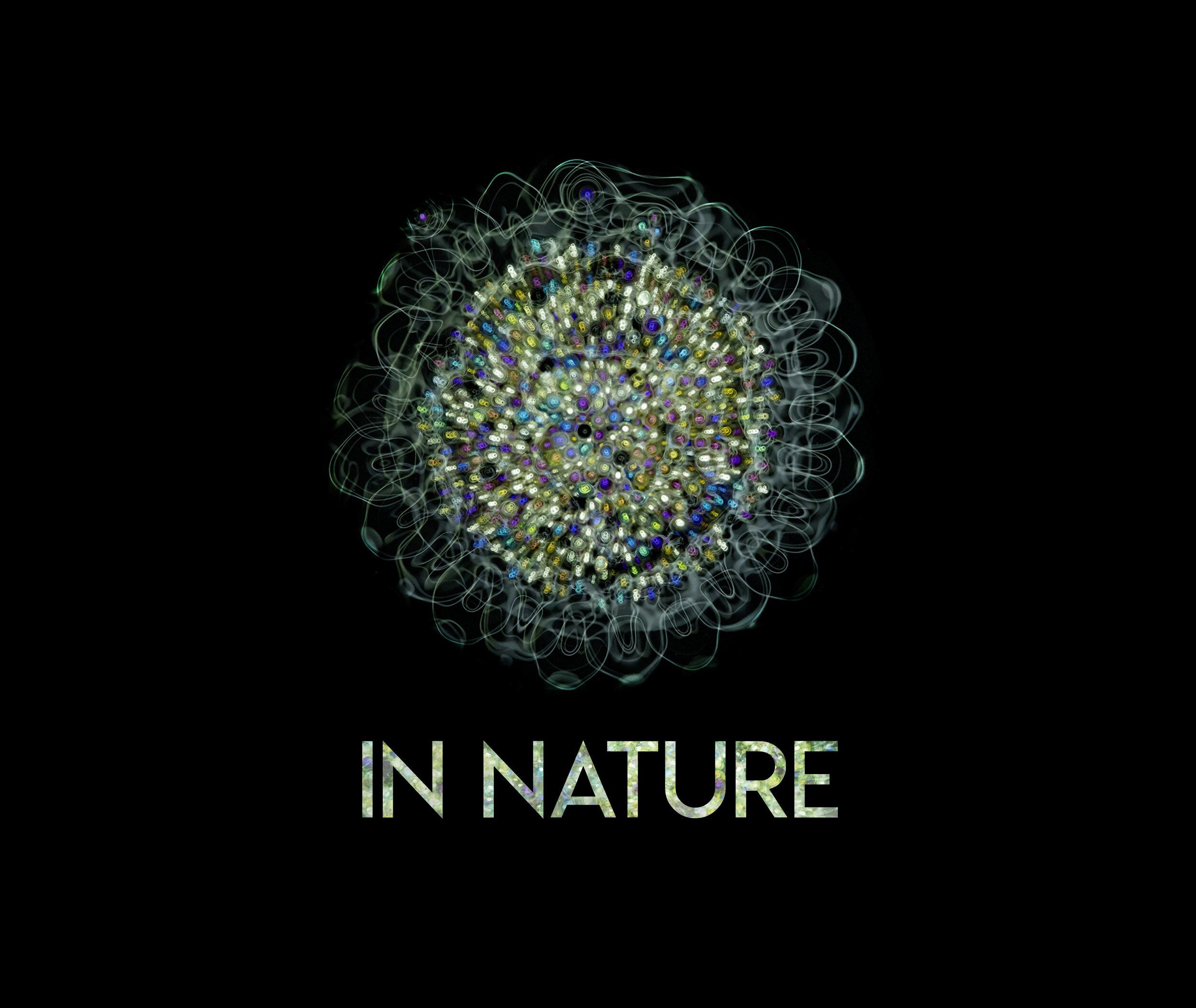 Image: 'Cymatic Flower' © Linden Gledhill