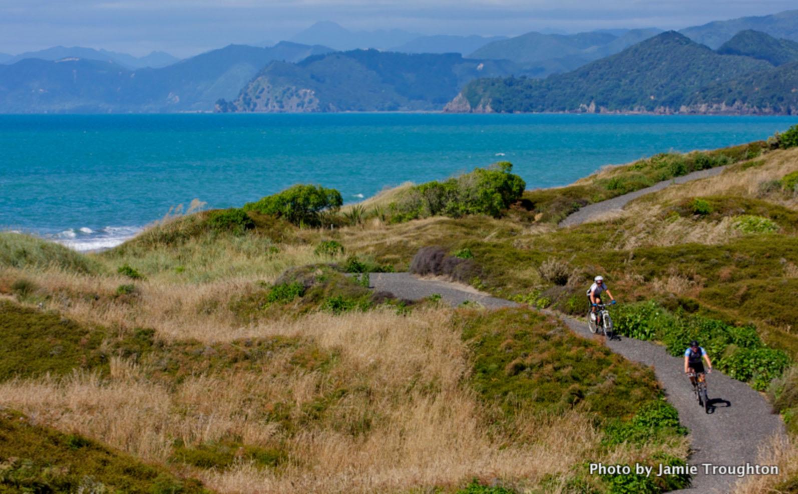 Motu Trails - 4.jpg